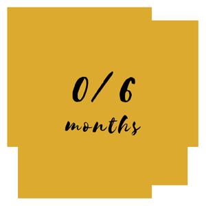 0/6 months