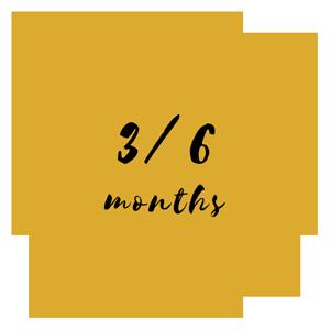 3/6 months